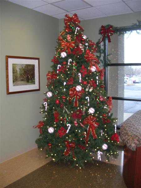 Designs Unlimited Interior Landscapes » Holiday and  ~ 133353_Christmas Decorations For Office Reception Area